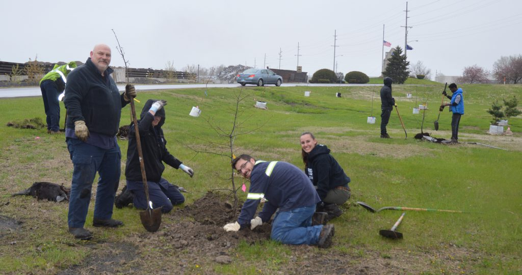 Tree planting in Indiana